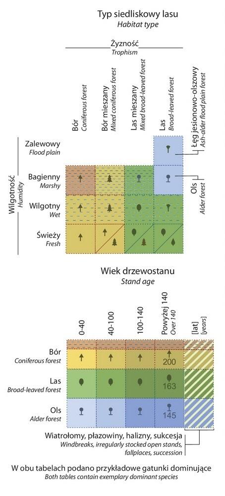 tabelki